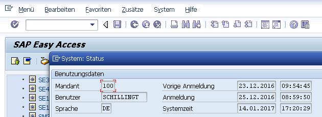 SAP Netweaver 7.02