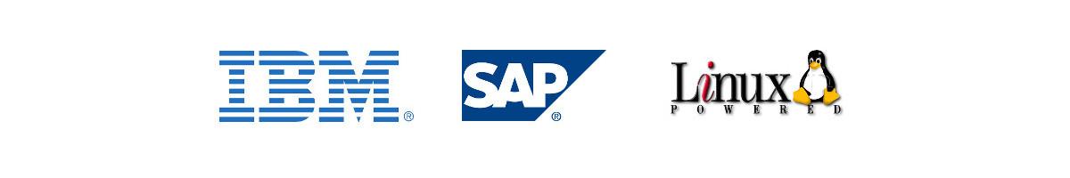 SAP Premium Lösungen